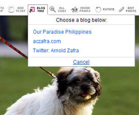 Flickr Rolls Out Twitter Integration Feature