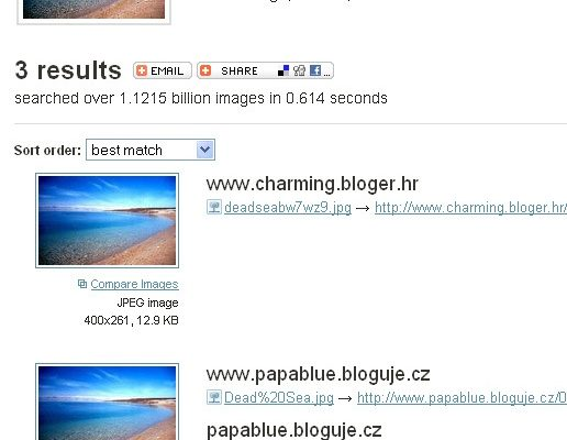 A Look into Reverse Image Search Tools