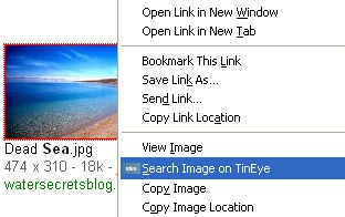 FireFox Friday Addon: TinEye Reverse Image Search
