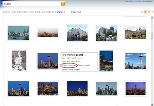 Bing Adds More Sizes Option to Image Search