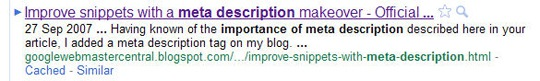 "Google search result for ""importance of meta description"""
