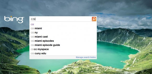 Bing Adaptive Search