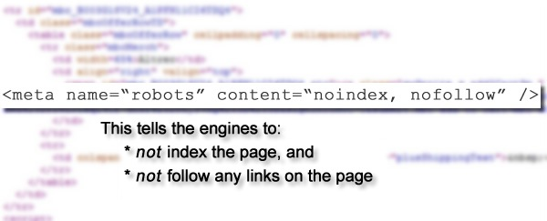 Two Examples of How One Line of Code Could Kill Your SEO [Case Studies]