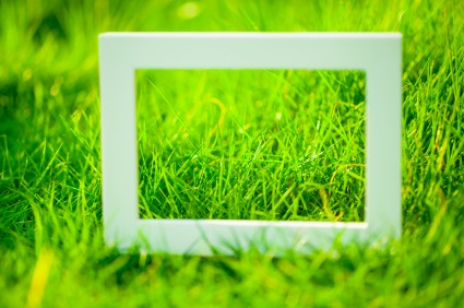 White Frame on Green Grass