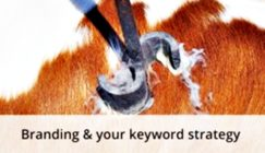 Making Your Brand and Keyword Strategy Work Together