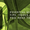 10 Essential LinkedIn Tips, Tools, and Strategies You Need to Know