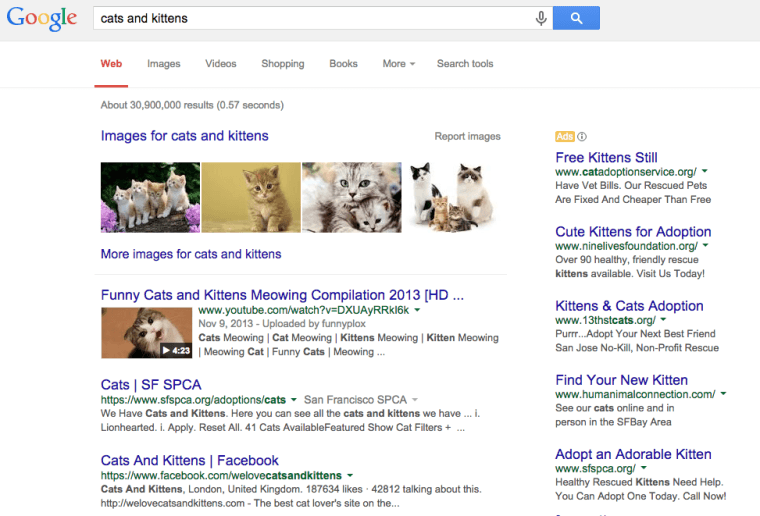 Cat and kittens Google Search