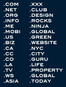domain examples