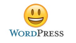 How to Add Emojis to Title Tags and Meta Descriptions in WordPress