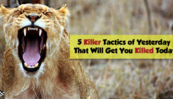 Yesterday's SEO Tactics That Will Get You Killed Today | SEJ