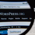 4 Great WordPress Site Search Plugins | SEJ