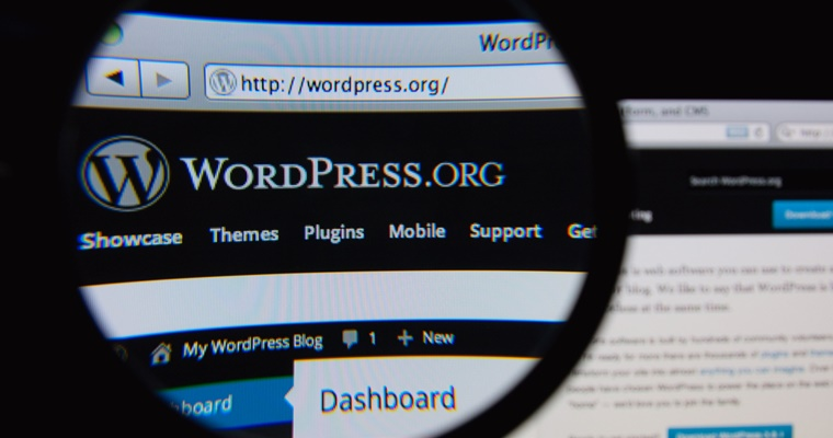 4 Great WordPress Site Search Plugins