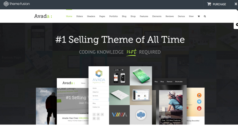Avada WordPress Theme Screenshot