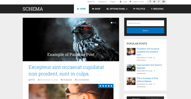 Schema WordPress Theme Screenshot