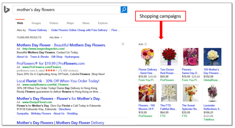 Bing research on Shopping Ads