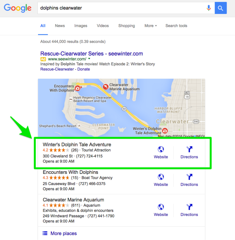 Google Local Search Query Dolphin Clearwater Search Query