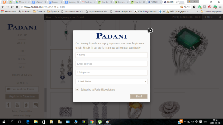 Padani's site follows the general approach of most ecommerce shops... but then the purchase process requires you to contact them. Not very self-serve...