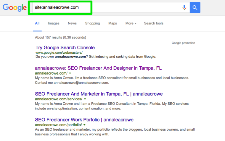 annaleacrowe_SEO audit site search