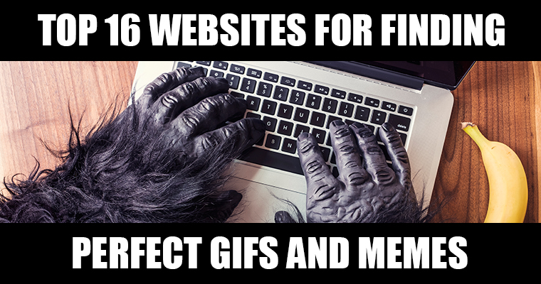Top 16 Websites for Finding Perfect GIFs and Memes