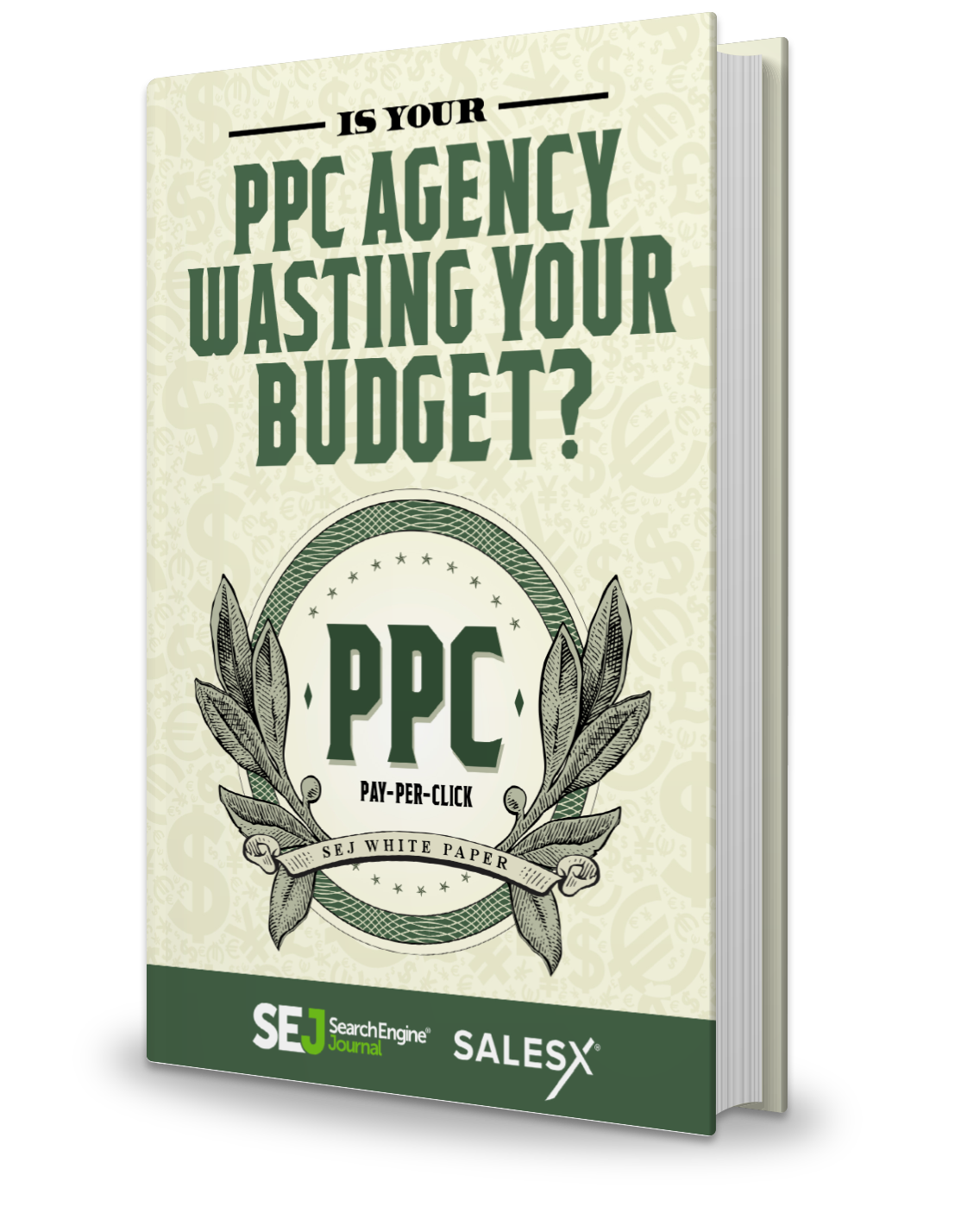 Is Your PPC Agency Wasting Your Budget? [NEW]