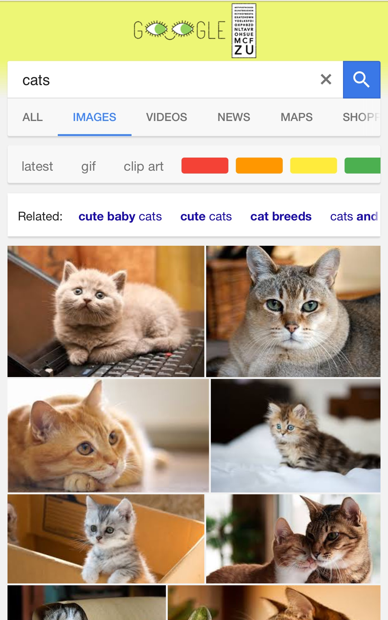 New Filters Added to Google Image Search