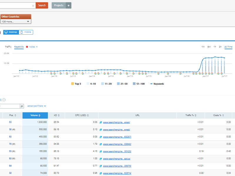 SEMRush Screenshot - Keyword Rankings