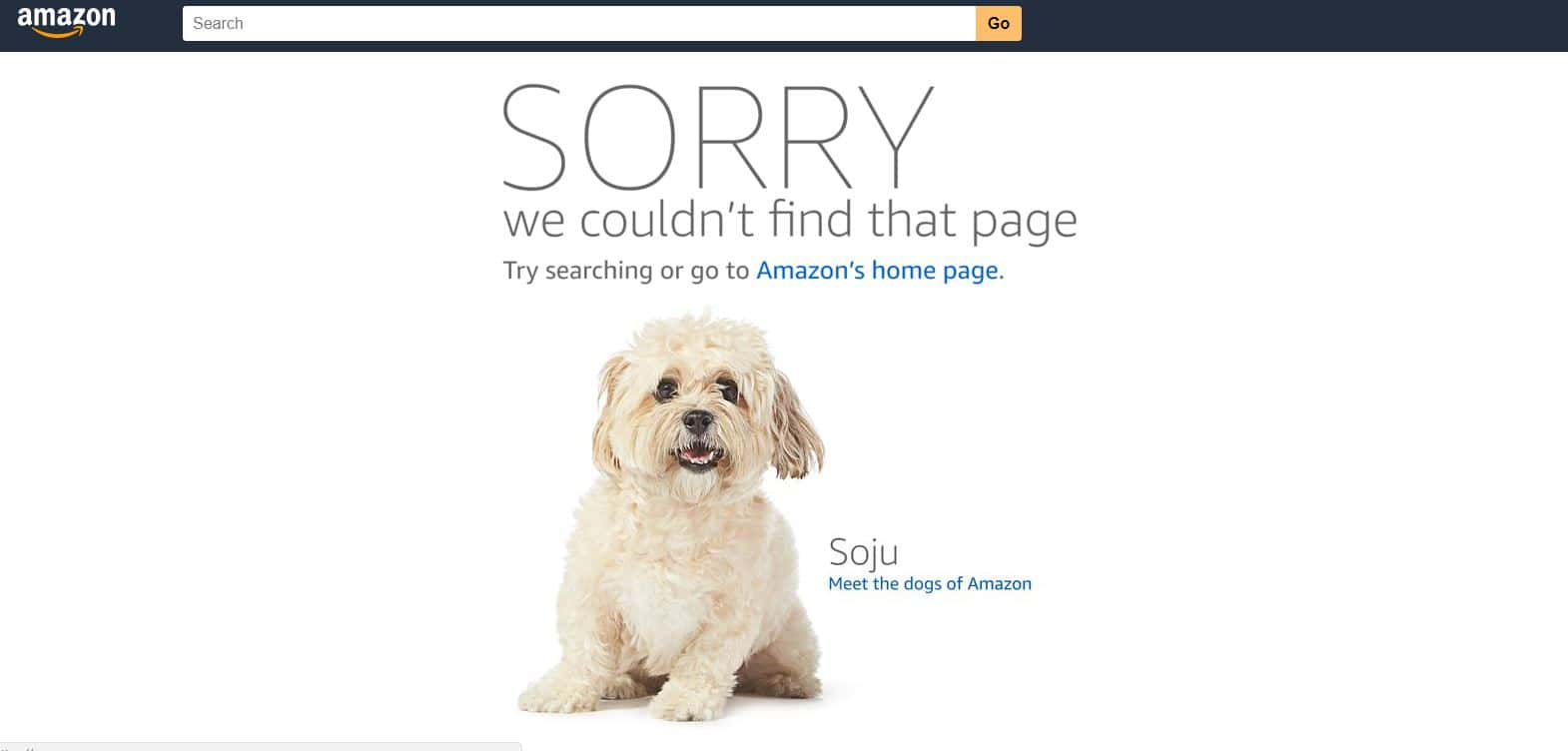 amazon soju - error page