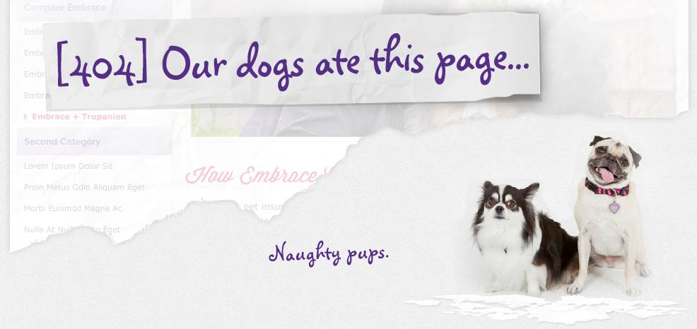 embrace pet insurance - 404 error page
