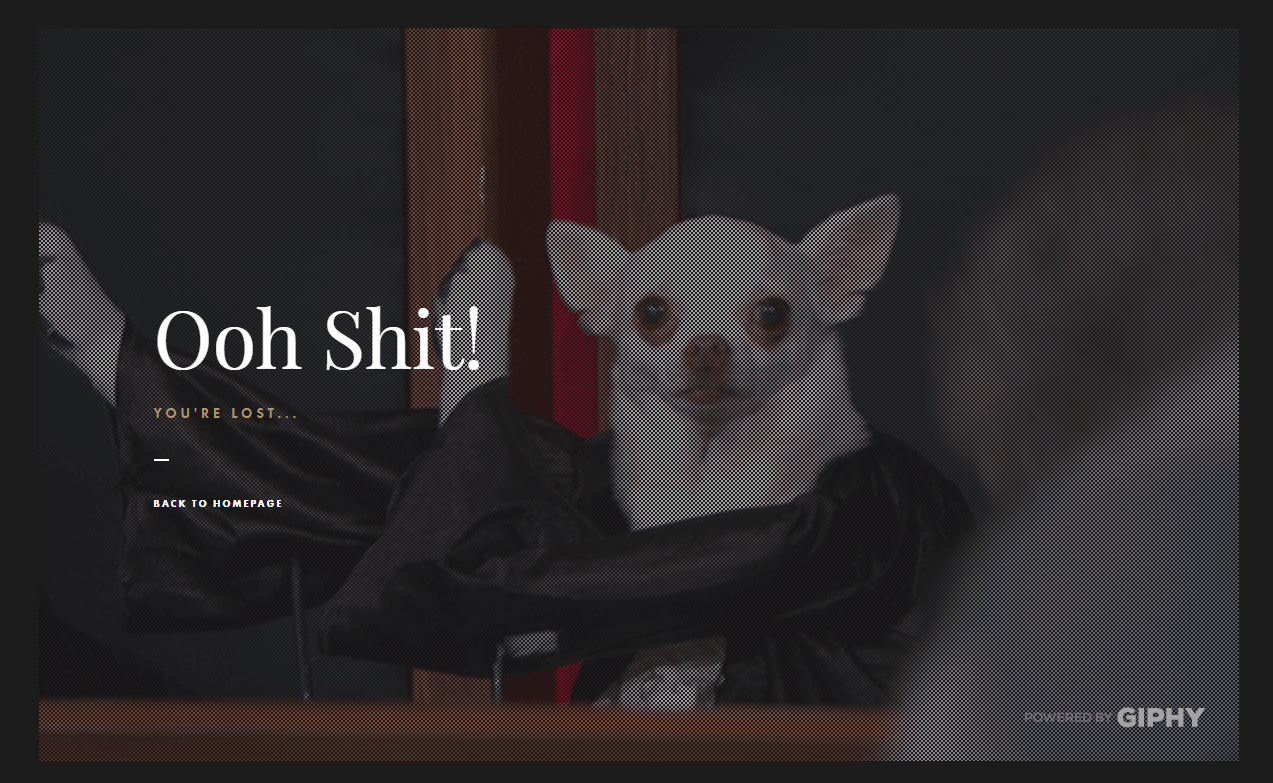 Dog Studio 404 error page
