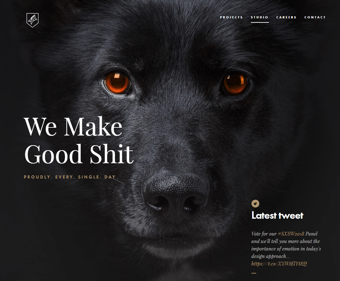 Dog Studio 404 error page example