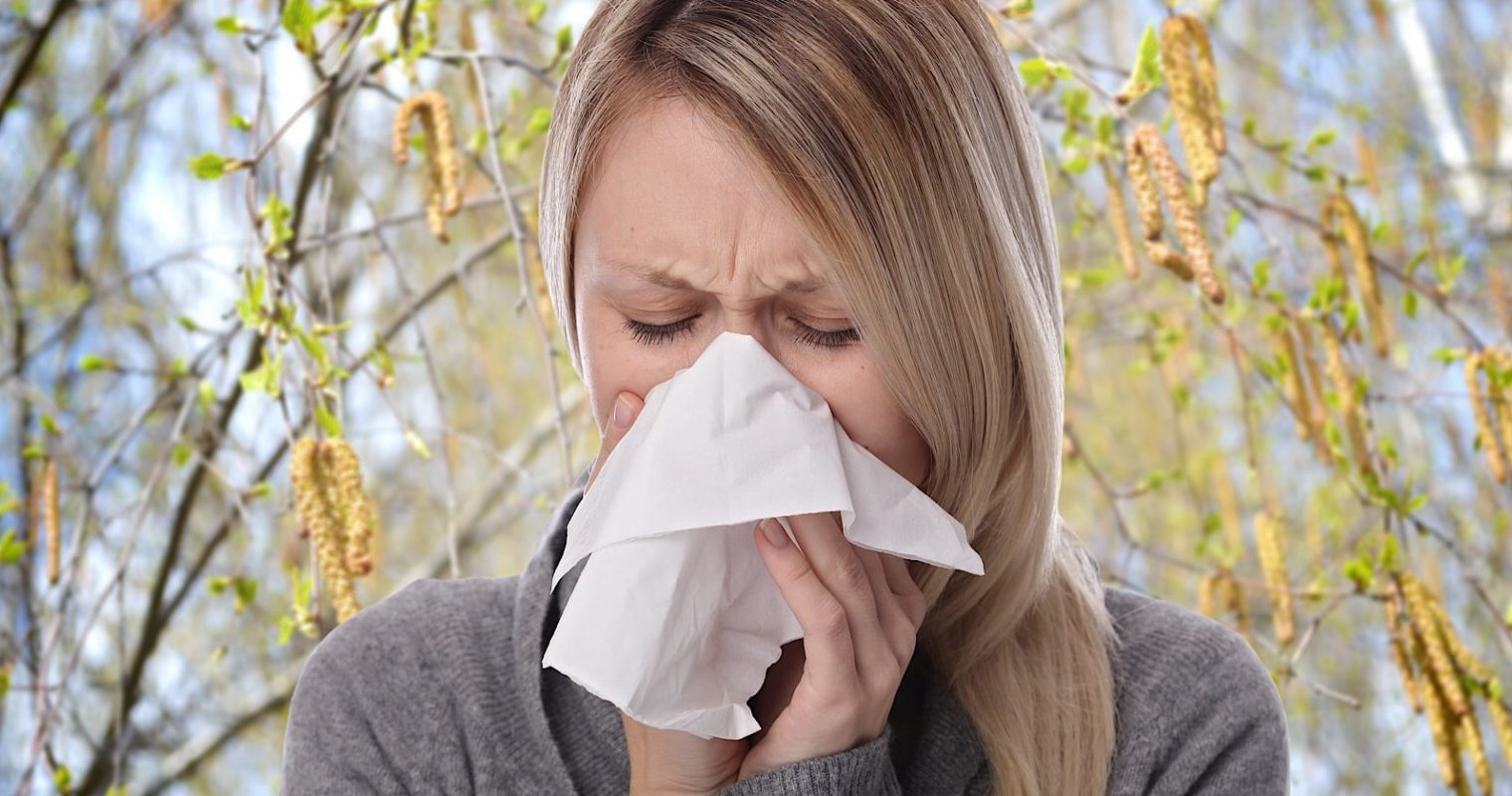 Google Search is Looking Out for People with Pollen Allergies