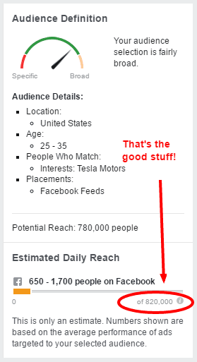 Screenshot of Facebook ad targeting data