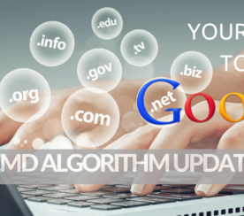 Your Guide to Google's Exact Match Domain Algorithm Update