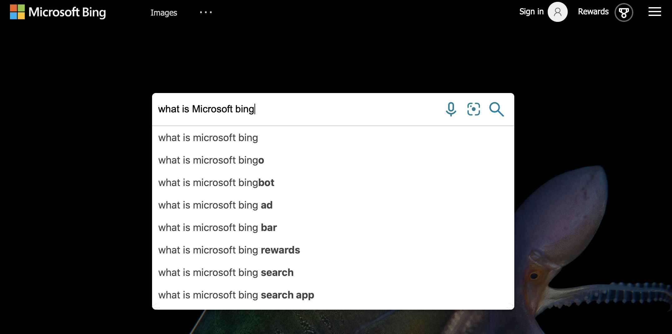 what is microsoft bing