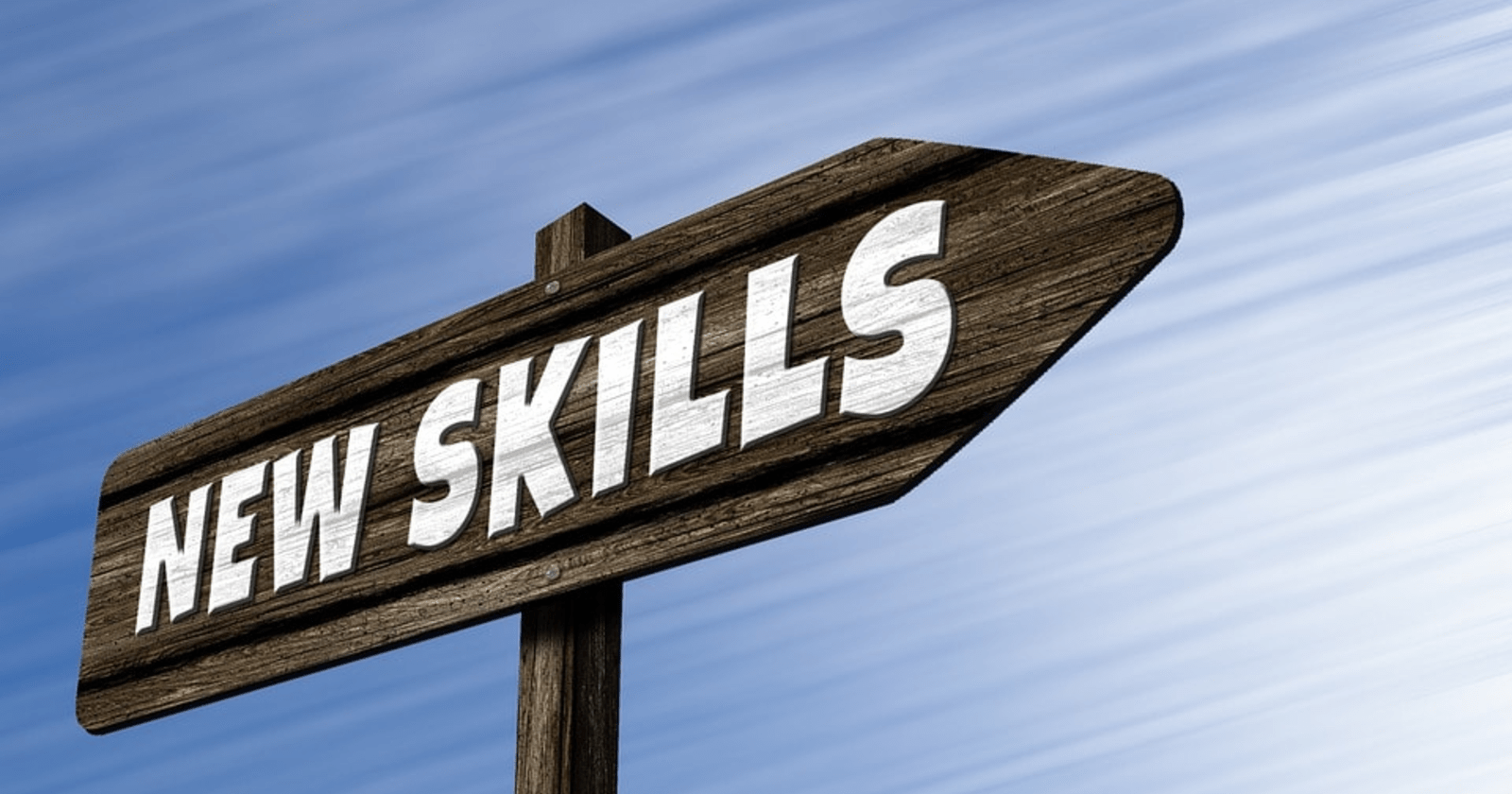 Top 8 Skills Every Great SEO Professional Needs to Succeed by @RyanJones