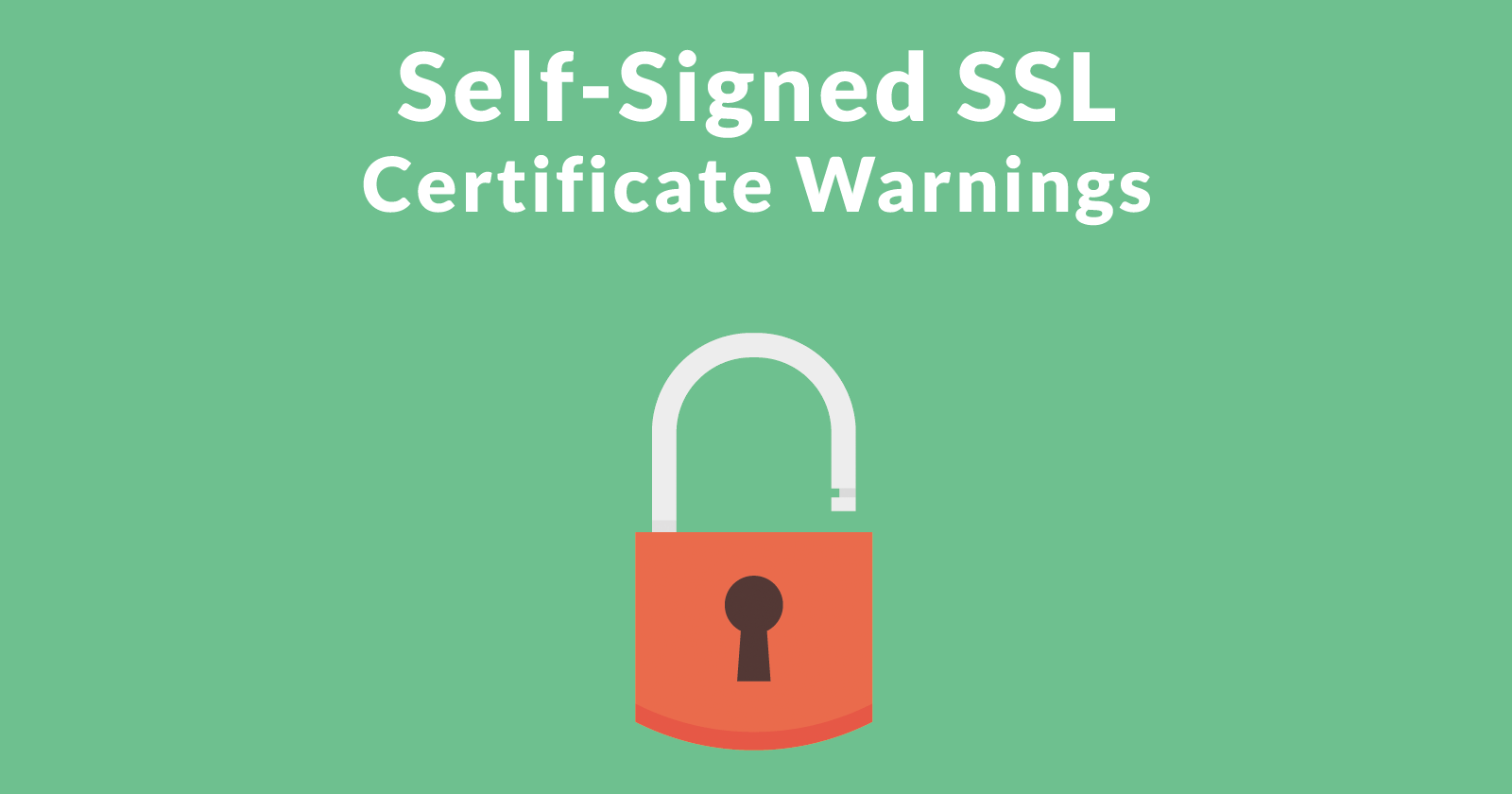 Risks In Using Self Signed Ssl Certificates Search Engine Journal