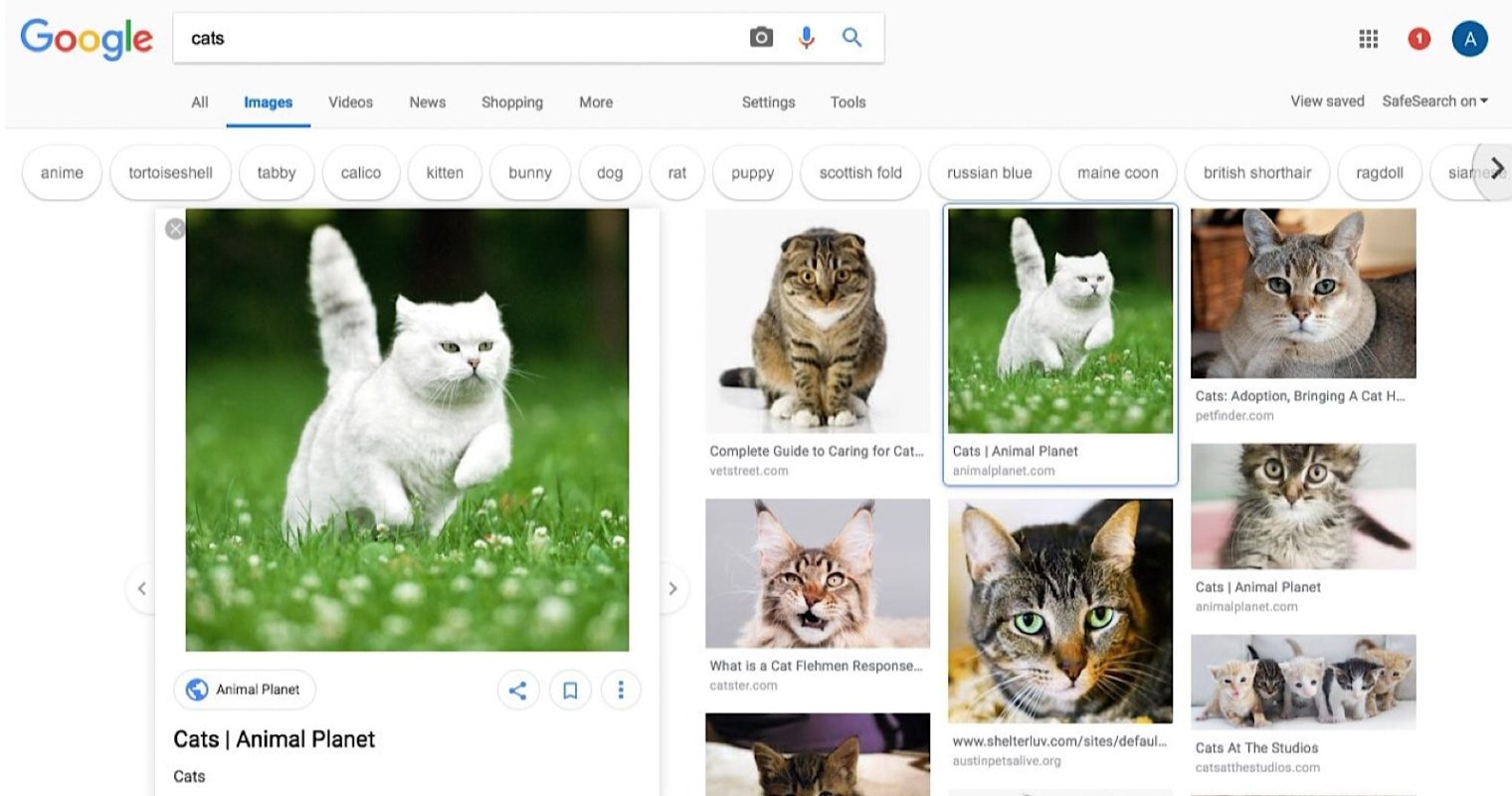 Google Tests New Design for Image Search Results