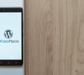 Top 11 WordPress Plugins for Agencies