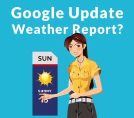 Should Google Offer Algo Update Reports?