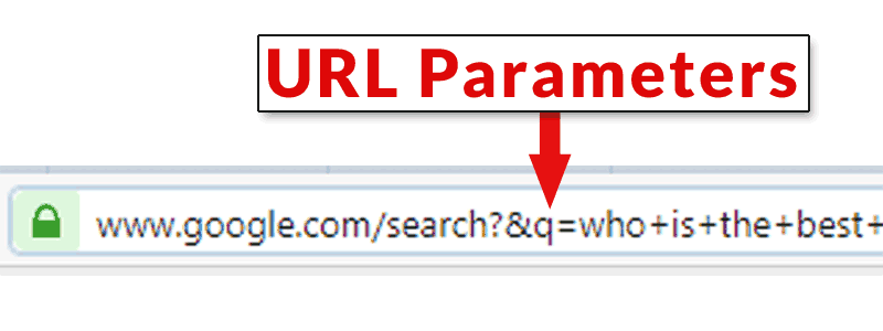 Screenshot of a browser URL bar showing an example of what a URL Parameter is. It's generally whatever comes after a question mark in the URL
