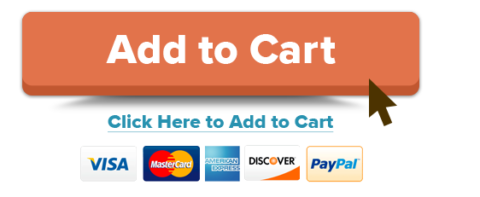 Example of CTA from ecommerce site.