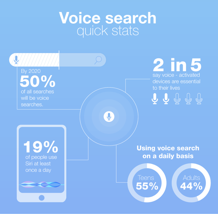 SEO 2020 Voice Search statistics