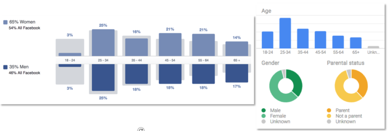 Facebook & Google Ads Demographic Comparisons