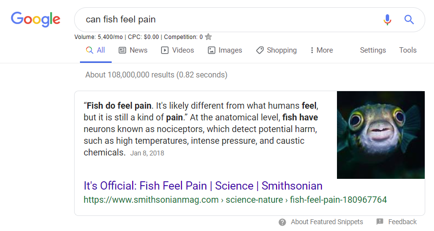 Can fish feel pain?
