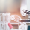 The Scientific Method for SEO: 6 Steps to Find Your True Ranking Factors