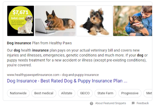 Dog insurance featured snippet