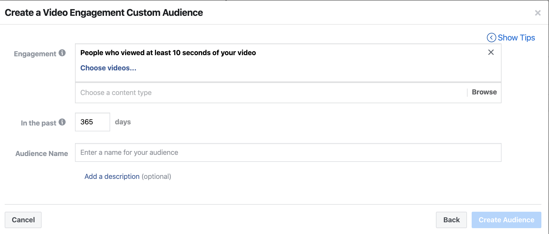 Facebook Video View Audience