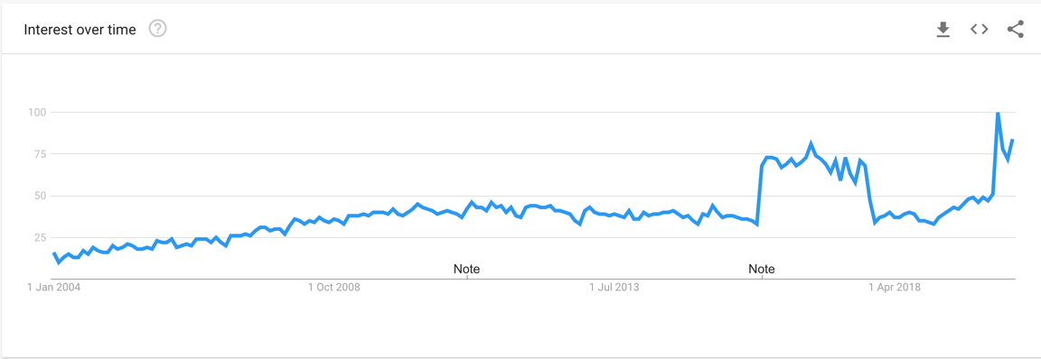Google Trends Interest on SEO