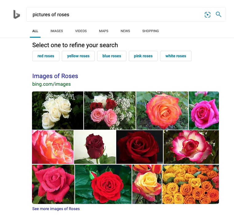 How Bing's Image & Video Algorithm Works