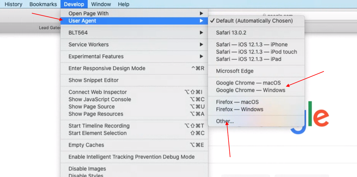 Safari's develop menu. User agent